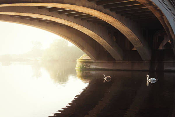 Nottinghamshire Photograph - Under The Arch by Chris Dale
