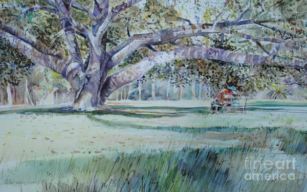 Tranquility Painting - Under The Banyan In Balboa Park by P Anthony Visco