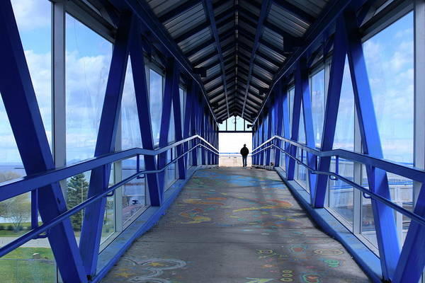 Photograph - Under The Blue Bridge by Tatiana Travelways