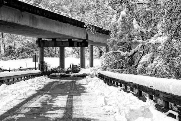 Photograph - Under The Blue Ridge Parkway In Snow by Carol Montoya
