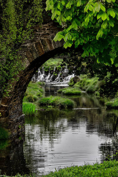 Photograph - Under The Bridge by Edgar Laureano