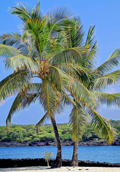 Photograph - Under The Coconut Trees by Pamela Walton