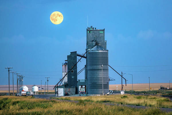 Photograph - Under The Harvest Moon by Todd Klassy