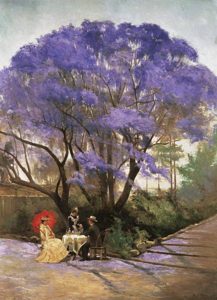 Blooming Tree Painting - Under The Jacaranda 1903 by Godfrey Rivers
