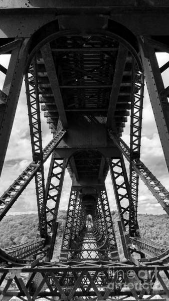 Photograph - Under The Kinzua Bridge In Black And White by E B Schmidt