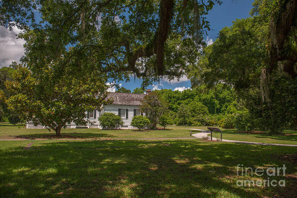 Photograph - Under The Oak Shade by Dale Powell
