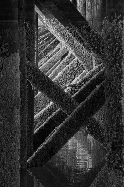 Fanny Bay Photograph - Under The Old Pier by Inge Riis McDonald
