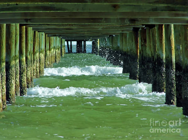 Photograph - Under The Pier At Anna Marie Island by D Hackett