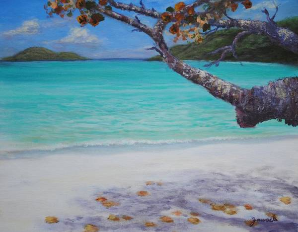 Painting - Under The Tree At Magen's Bay by Alan Zawacki