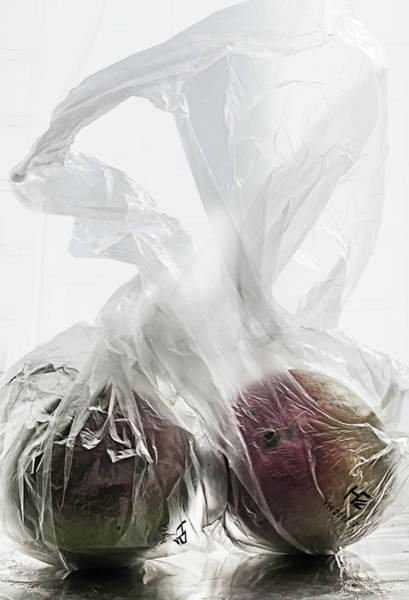 Mangos Photograph - Under Wraps  by Maggie Terlecki