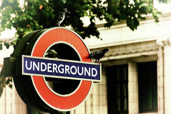Photograph - Underground by Rasma Bertz