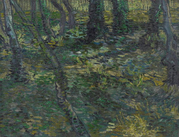 Pine Needles Painting - Undergrowth With Ivy, 1889 by Vincent Van Gogh