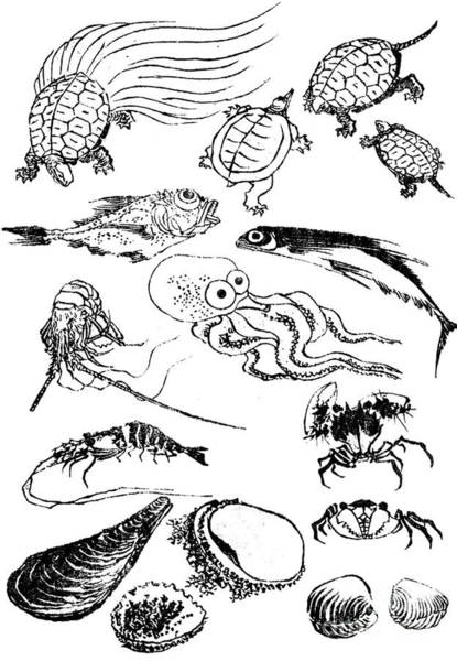 Wall Art - Painting - Undersea Creatures, From A Manga by Hokusai