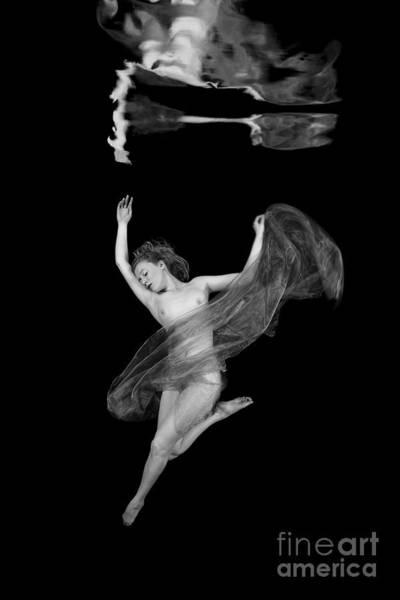 Photograph - Underwater Beauty 001 by Clayton Bastiani