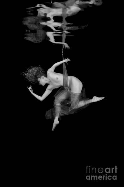 Photograph - Underwater Beauty 003 by Clayton Bastiani