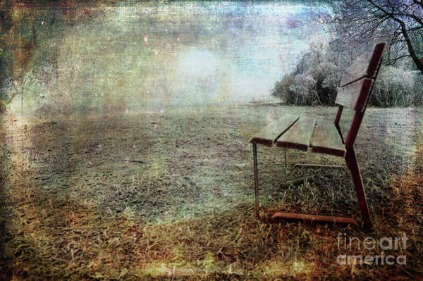Photograph - Undisturbed by Randi Grace Nilsberg