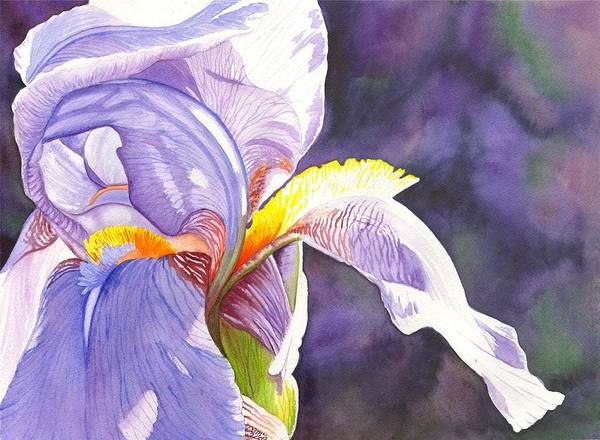Painting - Unfurling by Catherine G McElroy