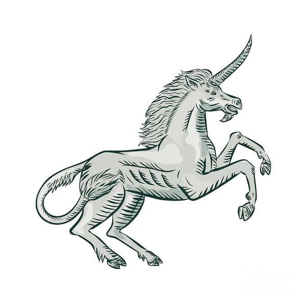 Unicorn Horn Digital Art - Unicorn Horse Prancing Side Etching by Aloysius Patrimonio