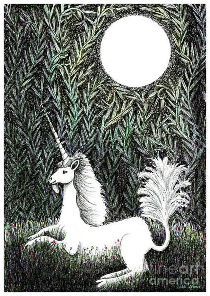 Drawing - Unicorn In Moonlight by Lise Winne