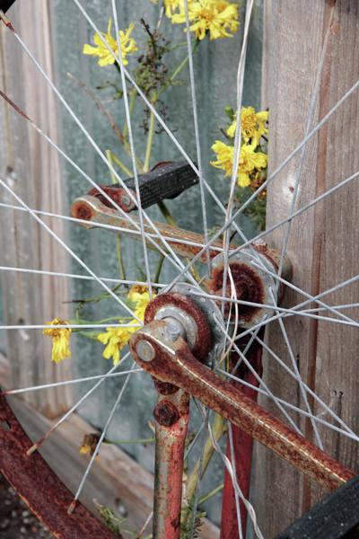 Wall Art - Photograph - Unicycle Wheel With Flowers by William Kuta