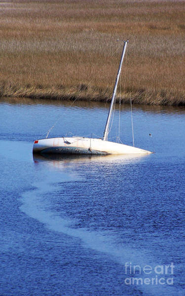 Photograph - Unintentionally Submerged by Jennifer Robin
