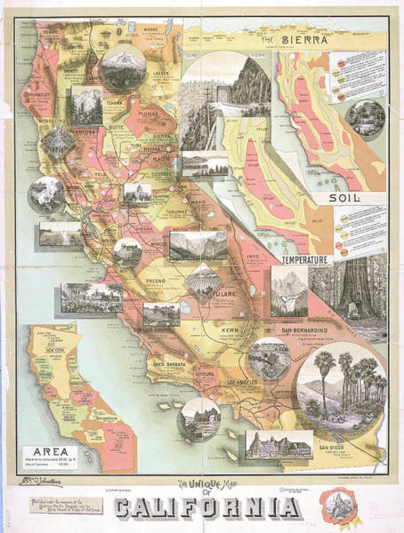 Cartography Photograph - Unique Map Of California 1890 by Ricky Barnard