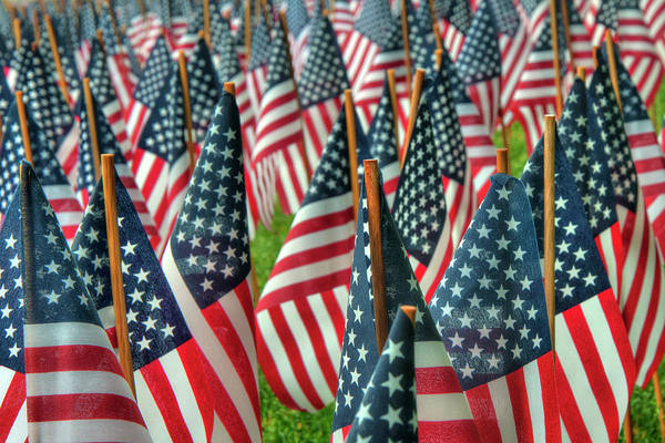 Photograph - United States Flags On Boston Common by Joann Vitali