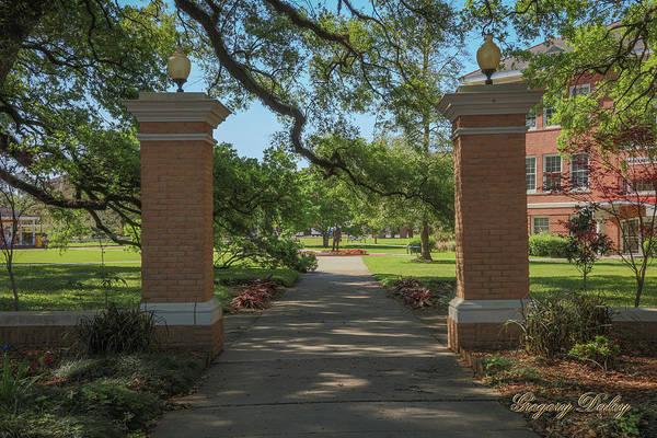 Photograph - University And Johnston Entrance by Gregory Daley  MPSA
