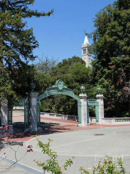 Wall Art - Photograph - University Of California At Berkeley Sproul Plaza Sather Gate And Sather Tower Campanile Dsc6262 by Wingsdomain Art and Photography