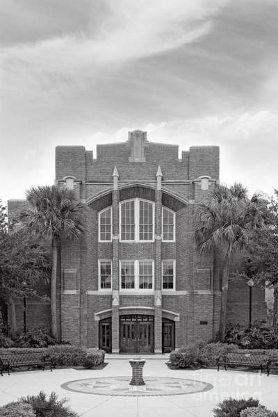 Photograph - University Of Florida Kathryn Chicone Ustler Hall by University Icons