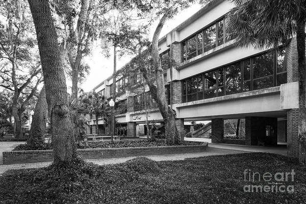 Photograph - University Of Florida Stuzin Hall by University Icons