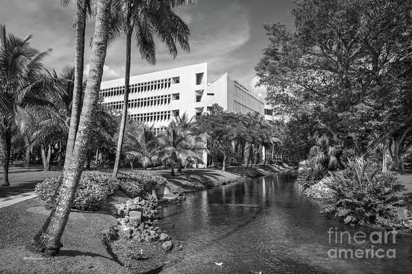 Photograph - University Of Miami School Of Business Administration  by University Icons