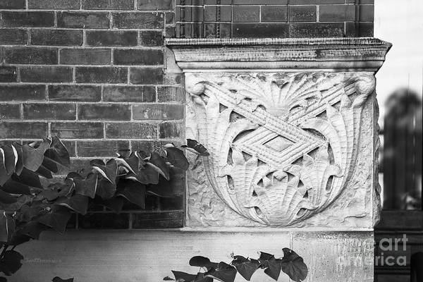 Photograph - University Of Michigan Organic Detail by University Icons