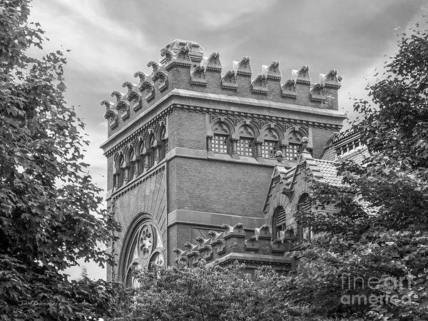 Photograph - University Of  Pennsylvania Fisher Fine Arts Library by University Icons