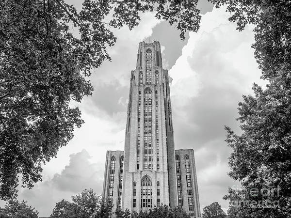 Photograph - University Of Pittsburgh Cathedral Of Learning Front by University Icons