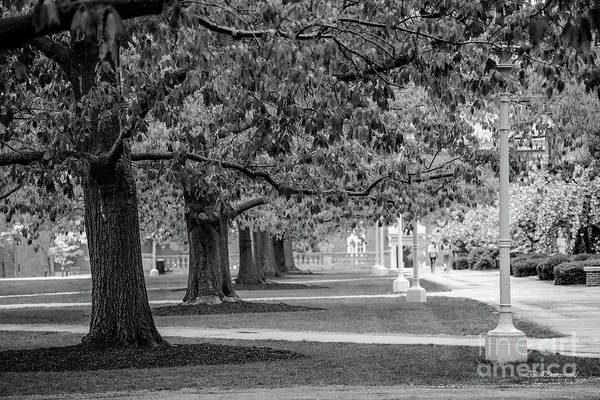 Photograph - University Of Rochester Eastman Quadrangle by University Icons