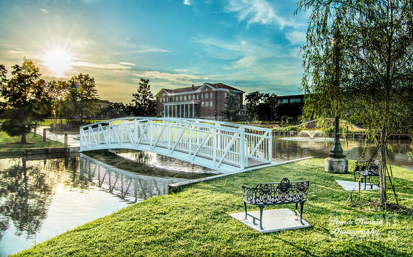 Photograph - University Of Southern Mississippi by James Hennis