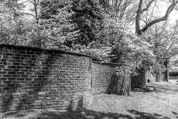 Photograph - University Of Virginia Serpentine Garden Wall by University Icons
