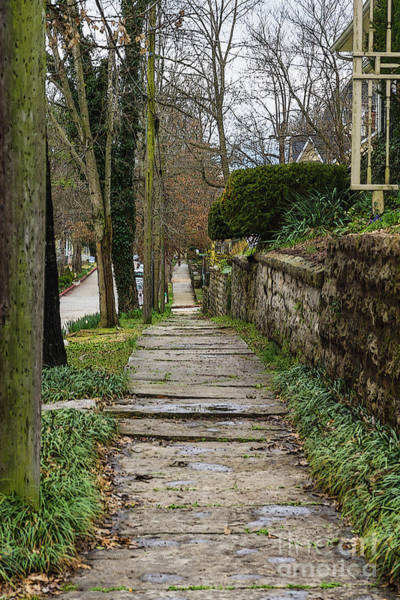 Arkansas Mixed Media - Unlevel Pathway by Jennifer White