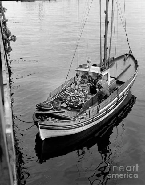 Photograph - Unloading Fish Fom A Monterey Fishing Boat  by California Views Archives Mr Pat Hathaway Archives