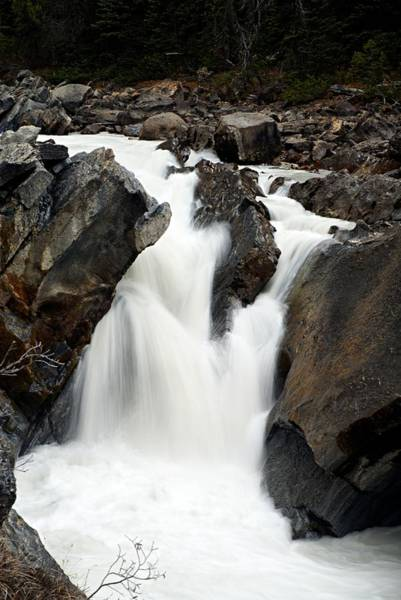 Photograph - Unnamed Cascade On The Yoho River by Larry Ricker