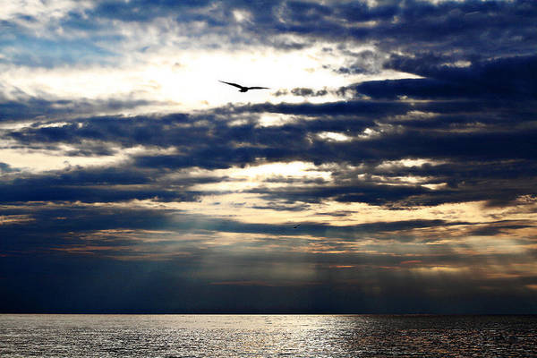 Wall Art - Photograph - Unordinary Sunset by Celestial Blue