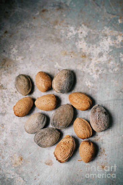 Wall Art - Photograph - Unpeeled Almonds by Viktor Pravdica