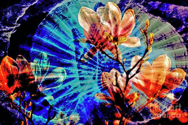 Digital Art - Unpredictable Encounter In A Dream by Silva Wischeropp