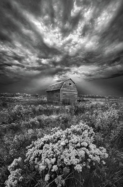 Photograph - Unsettled by Phil Koch