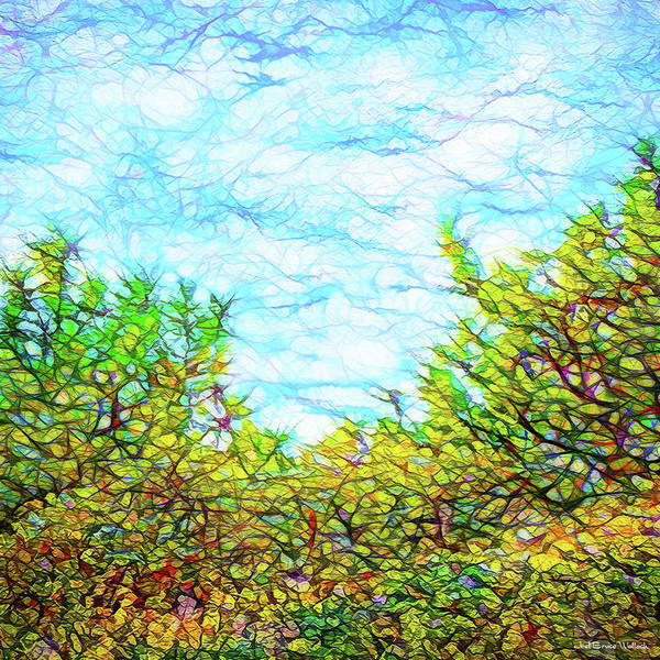 Digital Art - Untamed Meadow by Joel Bruce Wallach