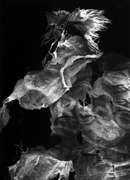 Digital Art - Untitled 6bw by Doug Duffey