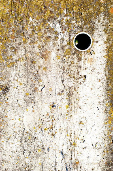 Wall Art - Photograph - Untitled Abstract  by Catherine Lau