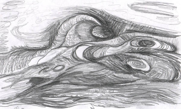 Organic Form Drawing - Untitled by Anne Marie ODriscoll