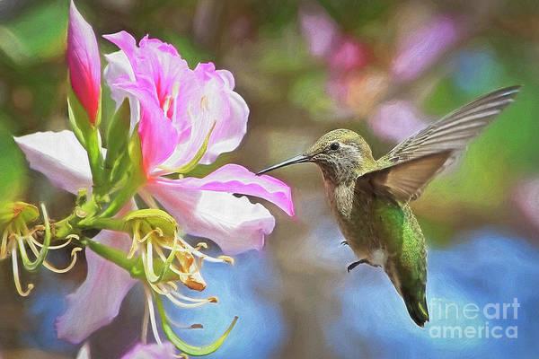 Nectar Mixed Media - Untitled by Edita De Lima
